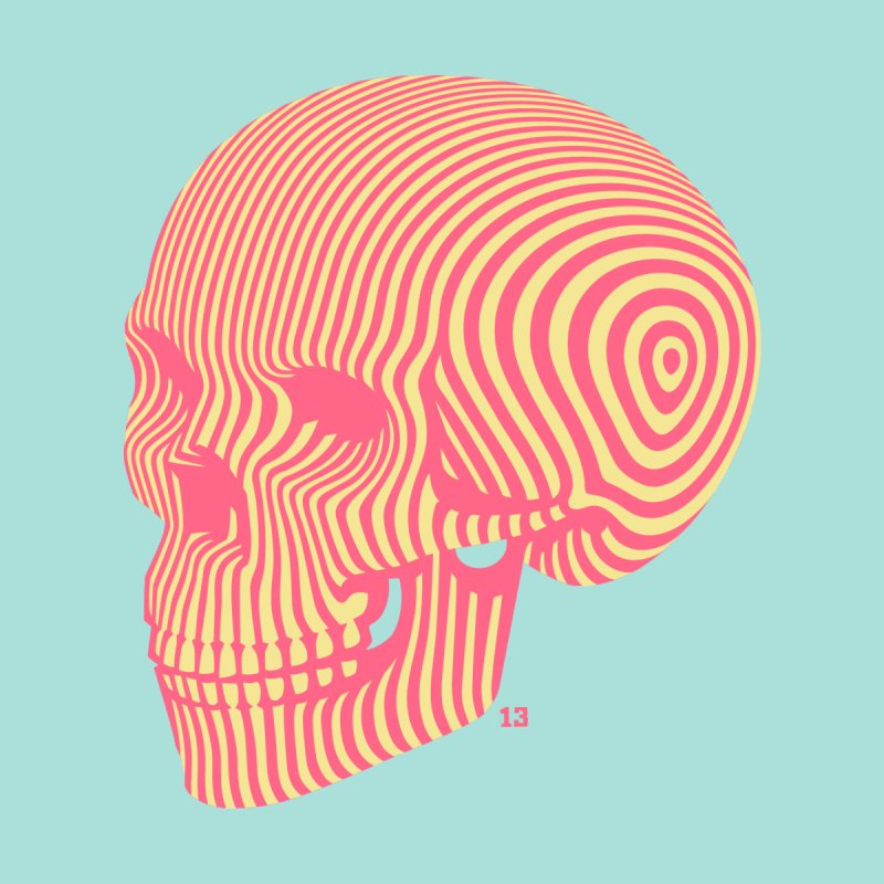 skull no. 1 by Heldenstuff