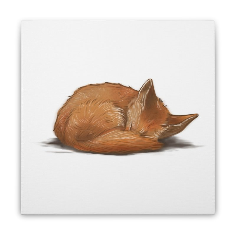 Let Sleeping Foxes Lie Home Stretched Canvas by The Art of Helenasia