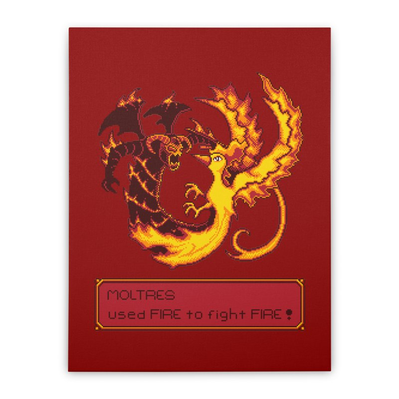 Shadow and Flame Home Stretched Canvas by Hidden Nature's Artist Shop