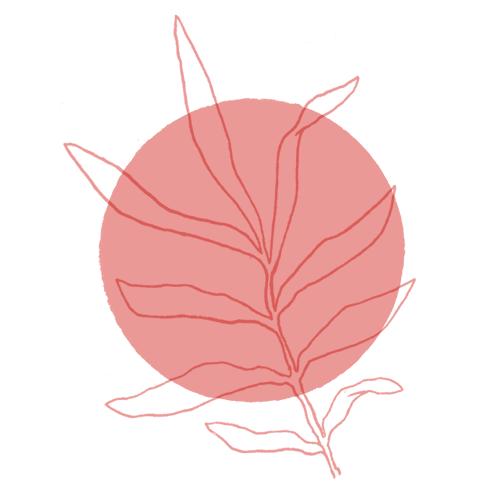 HIGU ROSE Logo