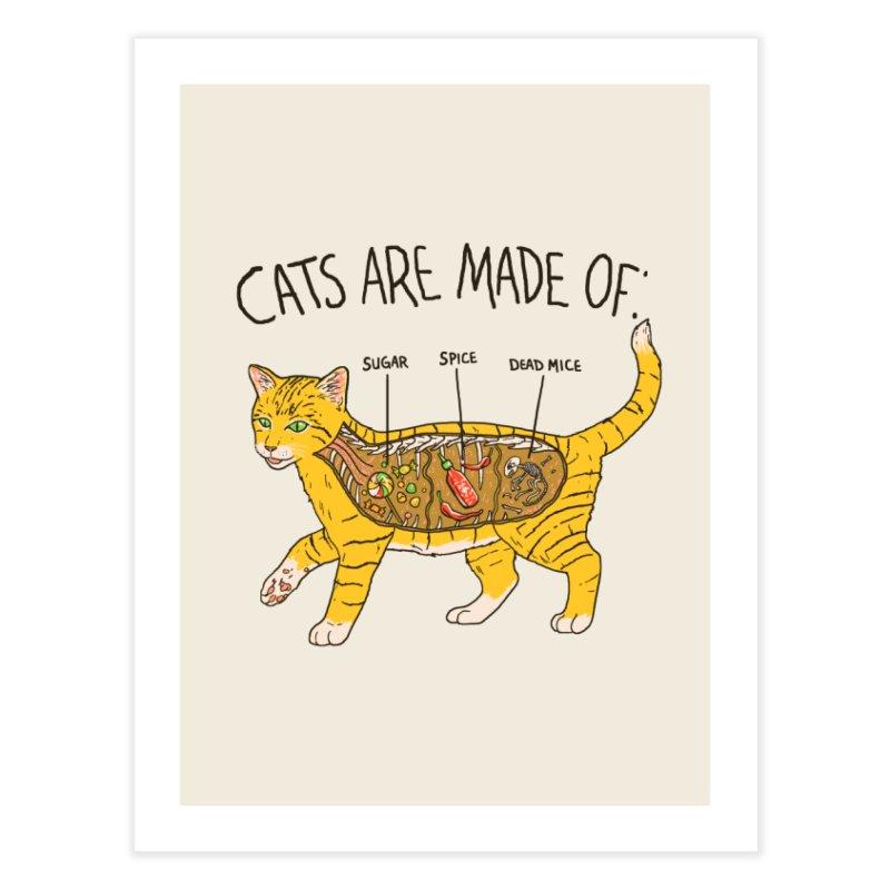 Cat Anatomy Home Fine Art Print by Hillary White