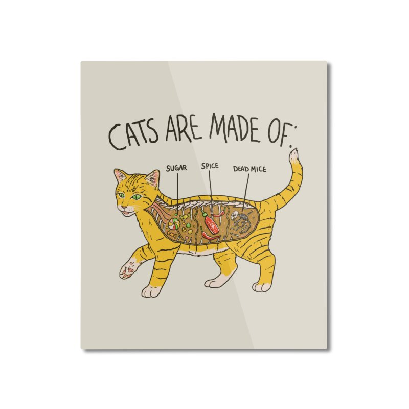 Cat Anatomy Home Mounted Aluminum Print by Hillary White