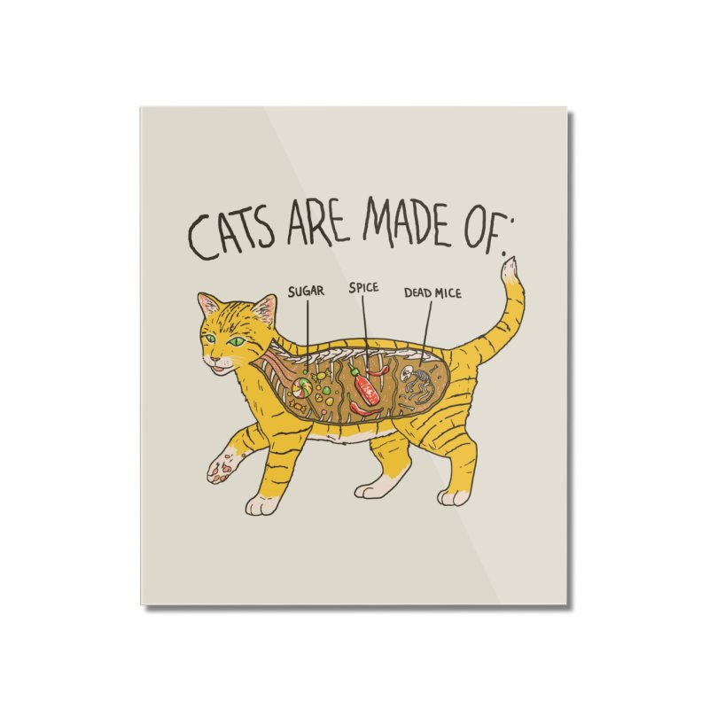 Cat Anatomy Home Mounted Acrylic Print by Hillary White