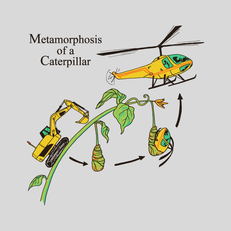 Metamorphosis of a Caterpillar by hillarywhiterabbit's Artist Shop