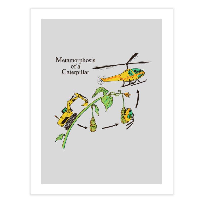 Metamorphosis of a Caterpillar Home Fine Art Print by hillarywhiterabbit's Artist Shop