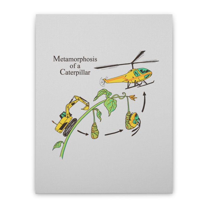Metamorphosis of a Caterpillar Home Stretched Canvas by hillarywhiterabbit's Artist Shop