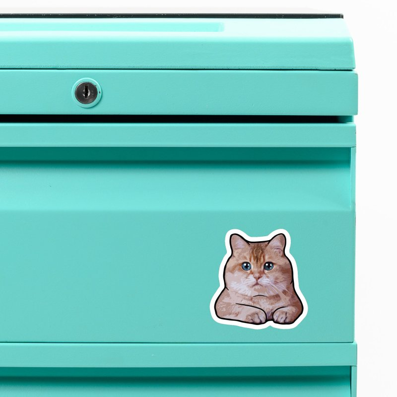 Hosico Cat Accessories Magnet by Hosico's Shop