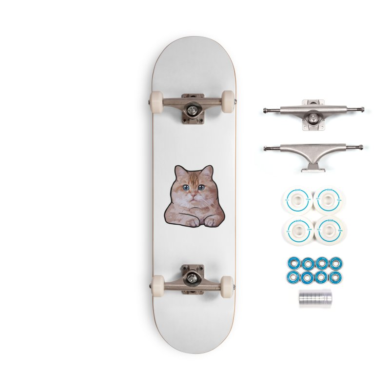 Hosico Cat Accessories Complete - Basic Skateboard by Hosico's Shop