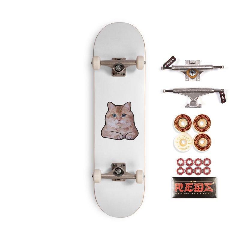 Hosico Cat Accessories Skateboard by Hosico's Shop