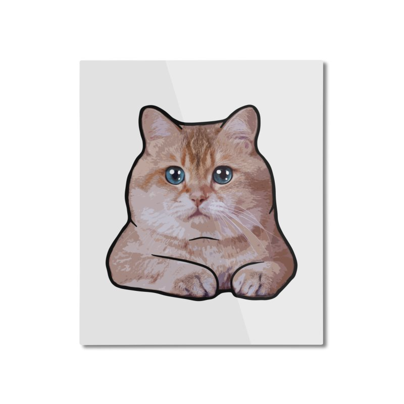 Hosico Cat Home Mounted Aluminum Print by Hosico's Shop
