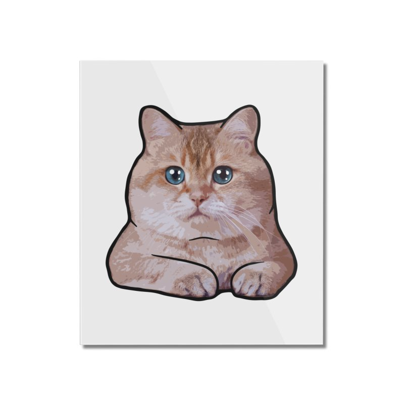 Hosico Cat Home Mounted Acrylic Print by Hosico's Shop