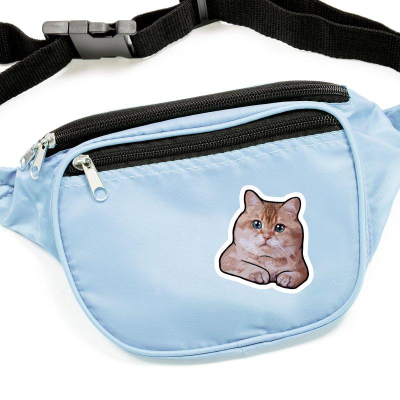 Hosico Cat Accessories Sticker by Hosico's Shop