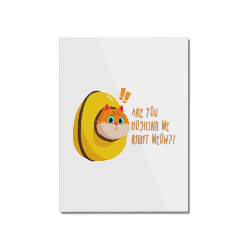 Are you Hosicing me right Meow?! Home Mounted Acrylic Print by Hosico's Shop