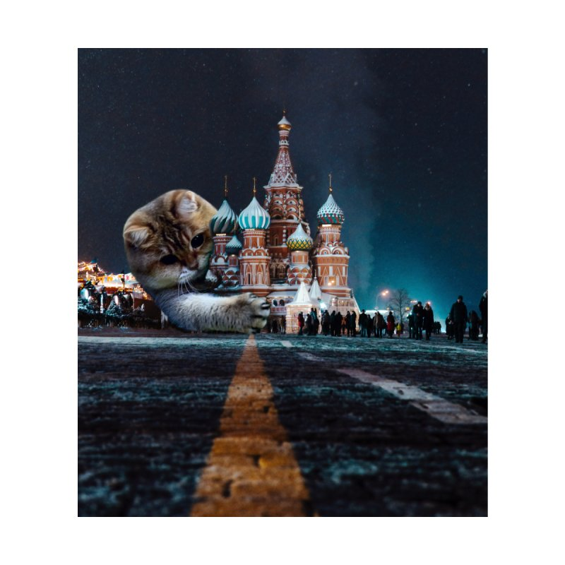 Saint Basil's Cathedral and Hosico Home Blanket by Hosico's Shop