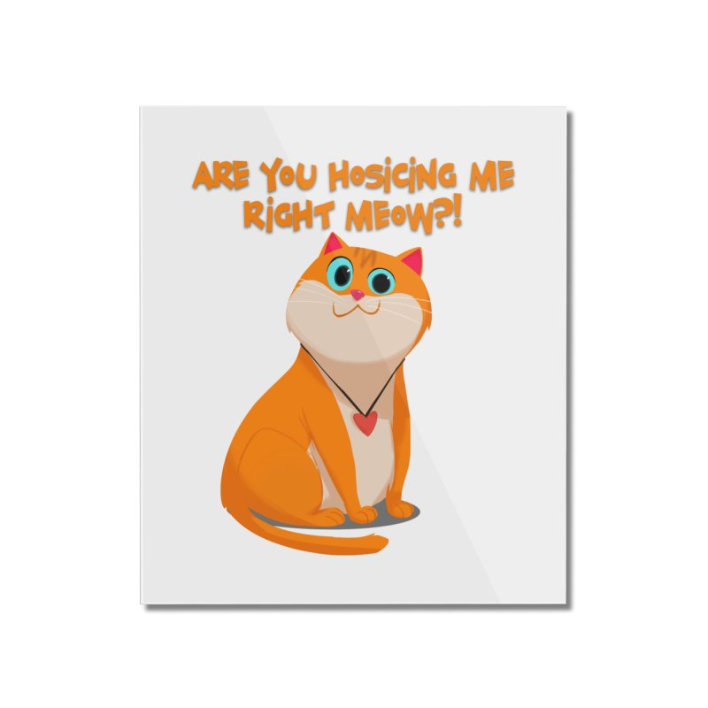 Are you Hosicing me right Meow?! Home Mounted Acrylic Print by Hosico's Artist Shop