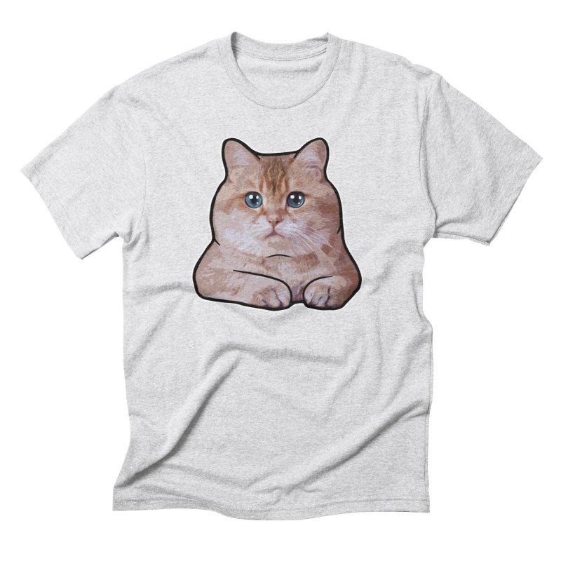 Hosico Cat Men's Triblend T-Shirt by Hosico's Shop