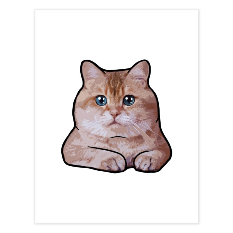 Hosico Cat Home Fine Art Print by Hosico's Shop