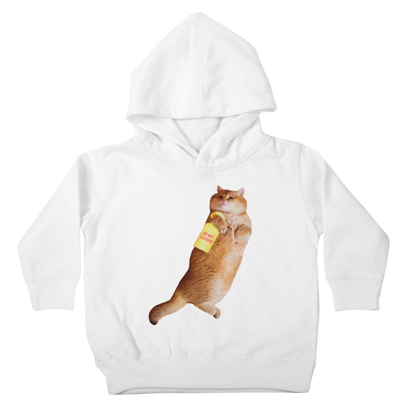 Do not disturb Kids Toddler Pullover Hoody by Hosico's Shop