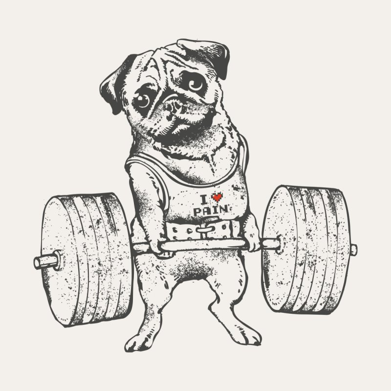 Pug Lift by huebucket's Artist Shop