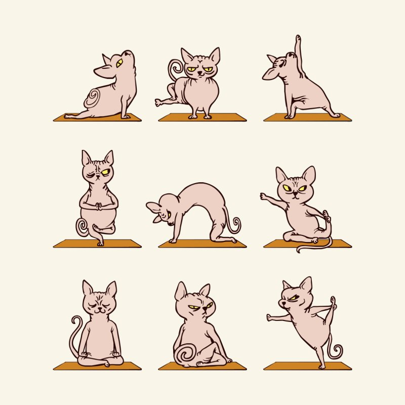 Sphynx Cat Yoga by huebucket's Artist Shop