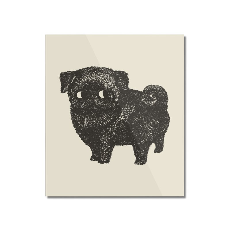 Black Pug  Home Mounted Acrylic Print by huebucket's Artist Shop