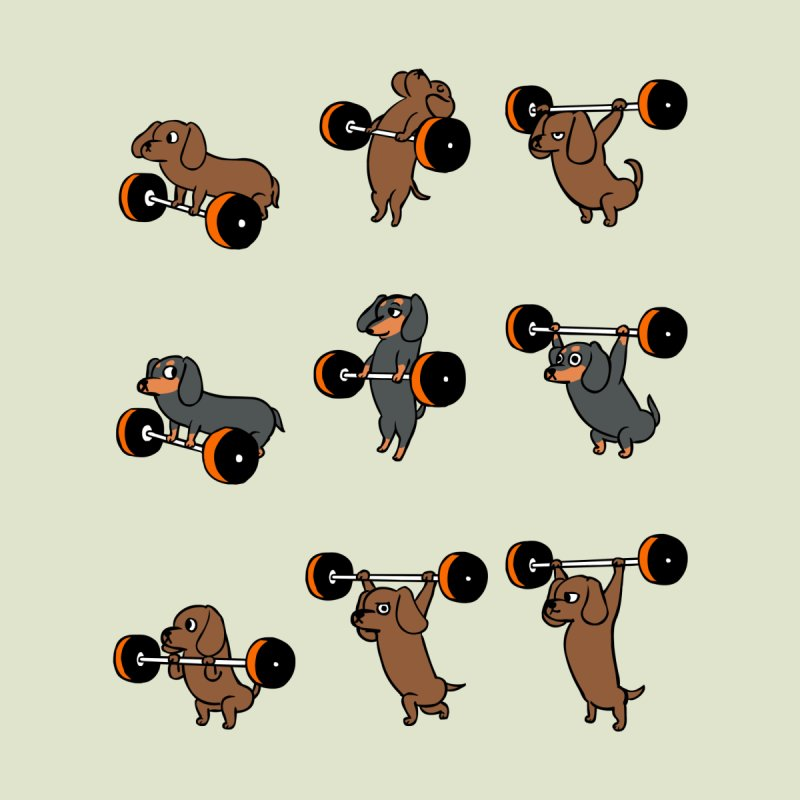 Olympic Lifting Dachshund by huebucket's Artist Shop