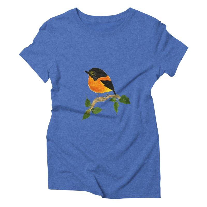 Orange FlyCatcher Women's Triblend T-Shirt by Hue Hub