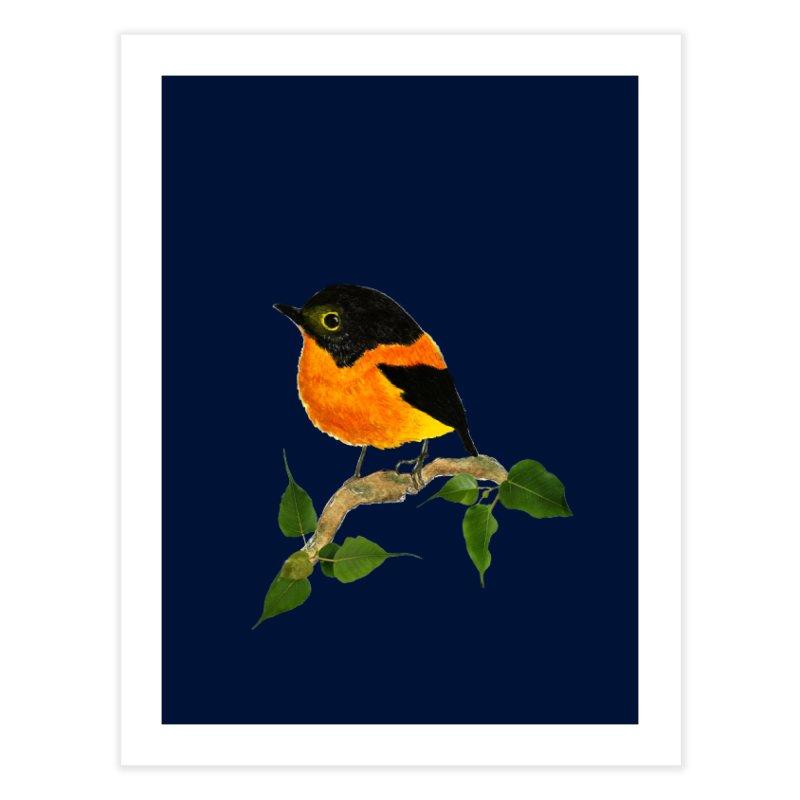 Orange FlyCatcher Home Fine Art Print by Hue Hub