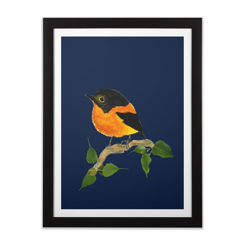 Orange FlyCatcher Home Framed Fine Art Print by Hue Hub