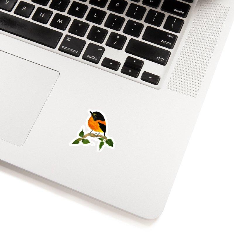 Orange FlyCatcher Accessories Sticker by Hue Hub