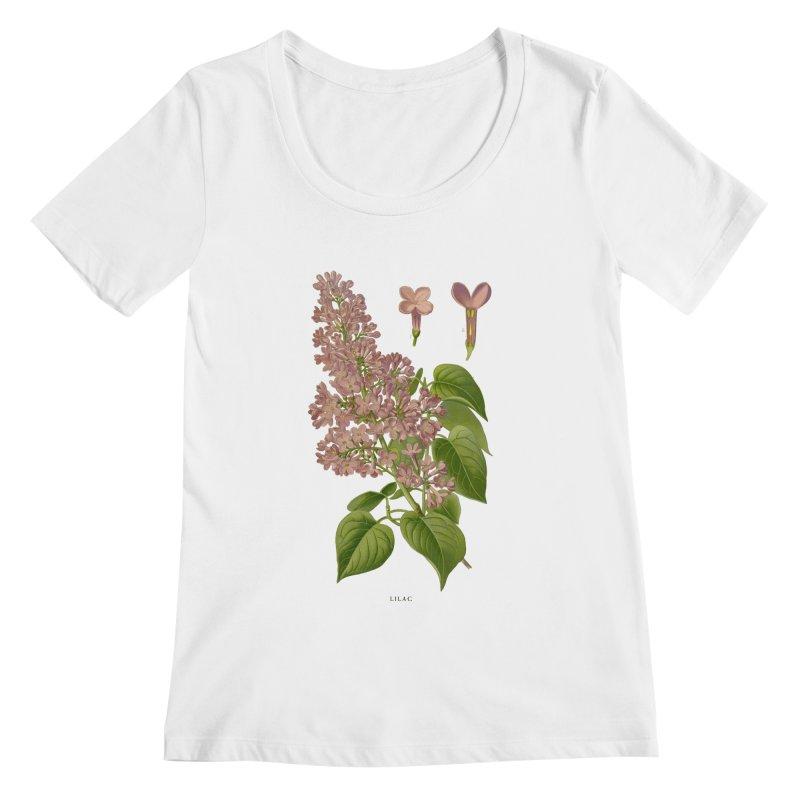 Lilac Women's Scoopneck by Iacobaeus's Artist Shop