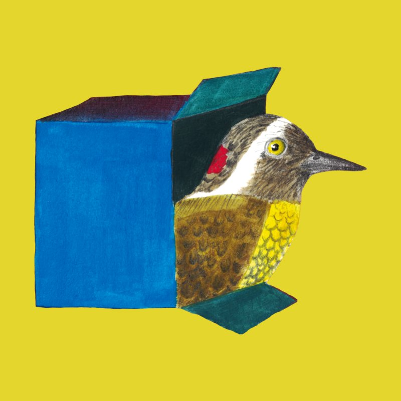 Bird in a Box | how did he get there? Accessories Sticker by MarcusFartist | Art POD Factory
