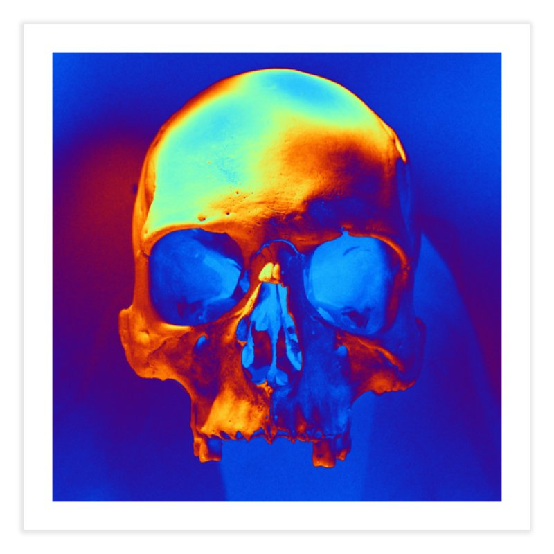 Skull in Blue and Gold Home Fine Art Print by Matthew Lacey-icarusismartdesigns