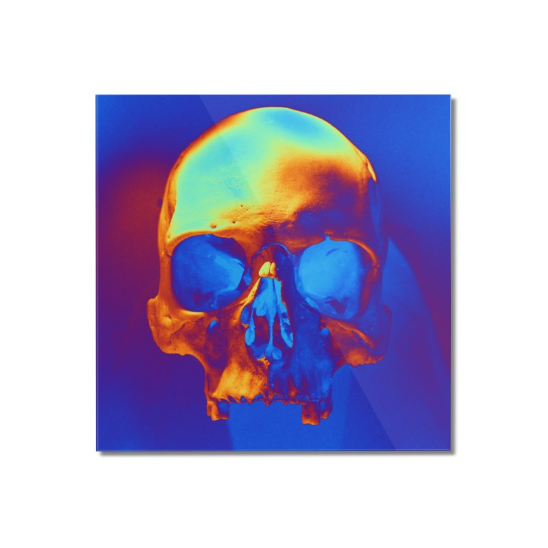 Skull in Blue and Gold Home Mounted Acrylic Print by Matthew Lacey-icarusismartdesigns