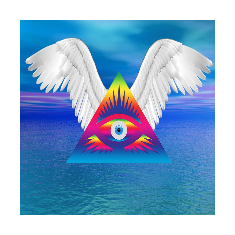 Third Eye with Wings Accessories Bag by Matthew Lacey-icarusismartdesigns