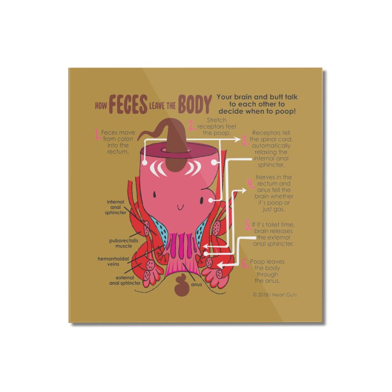 How Feces Leave the Body Home Mounted Acrylic Print by I Heart Guts