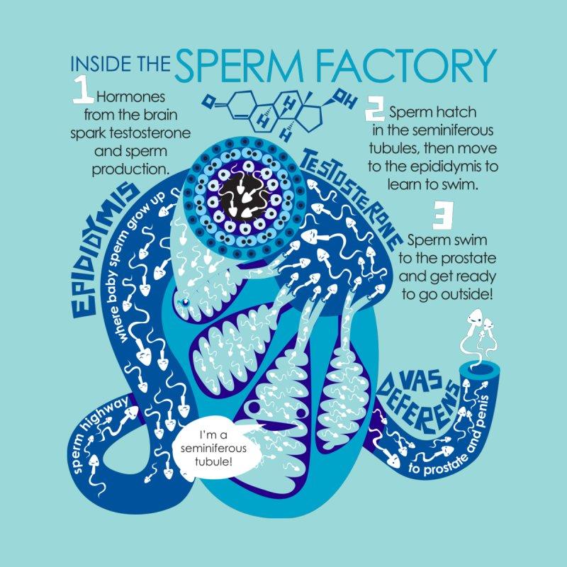 Inside the Sperm Factory - Spermatogenesis Home Blanket by I Heart Guts