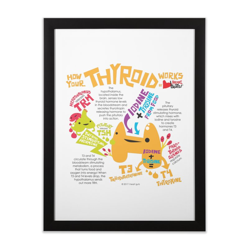How Your Thyroid Works in Framed Fine Art Print Black by I Heart Guts