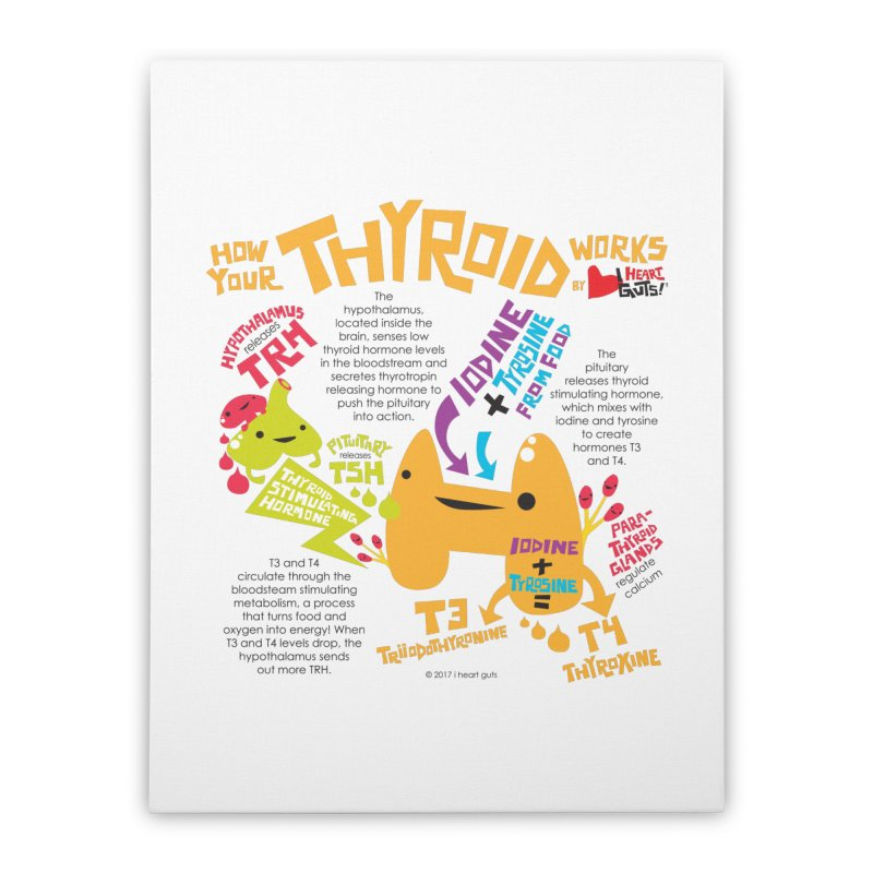 How Your Thyroid Works Home Stretched Canvas by I Heart Guts