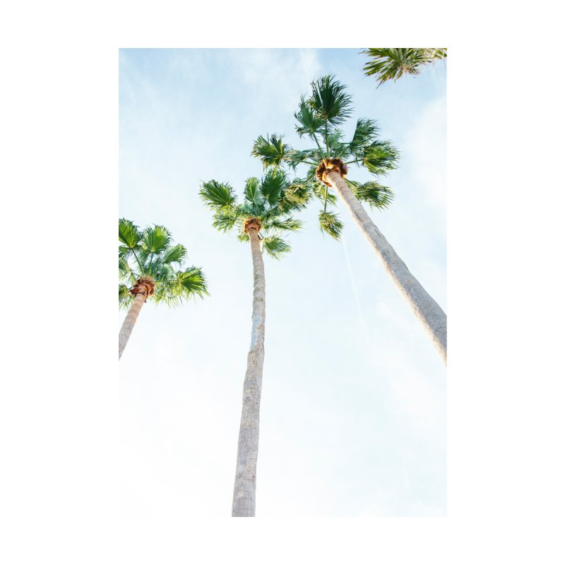 PALM TREES | ST. PETE, FL Home Shower Curtain by I Love the Burg Swag