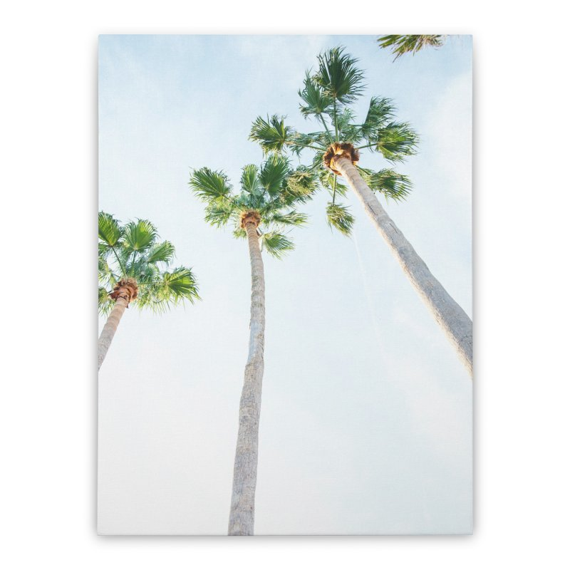PALM TREES | ST. PETE, FL Home Stretched Canvas by I Love the Burg Swag