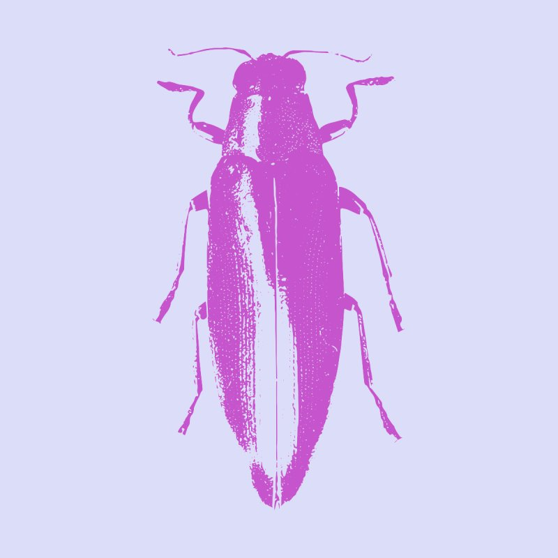 Pink Beetle Men's Tank by Inappropriate Wares
