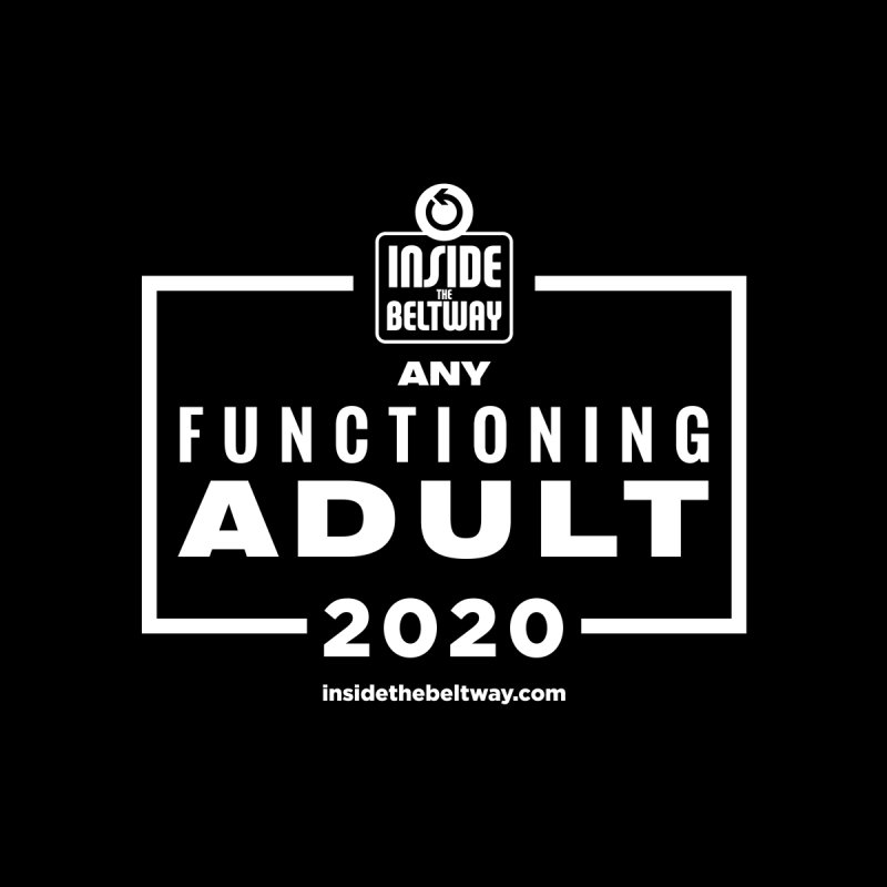 Any Functioning Adult 2020 by Inside The Beltway Store