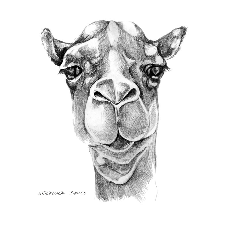 the Camel Home Framed Fine Art Print by it's Common Sense