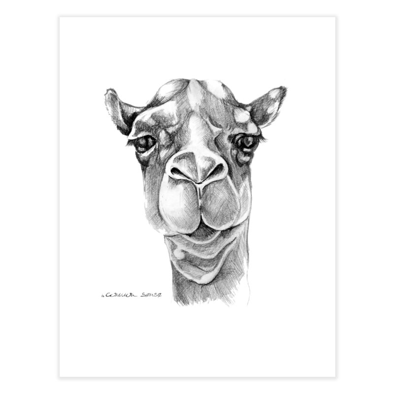 the Camel Home Fine Art Print by it's Common Sense