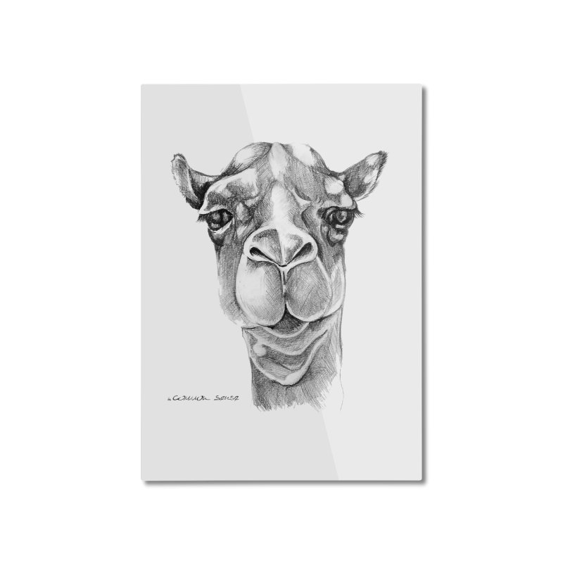 the Camel Home Mounted Aluminum Print by it's Common Sense