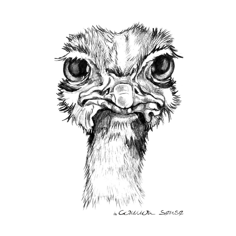 The Common Ostrich by it's Common Sense