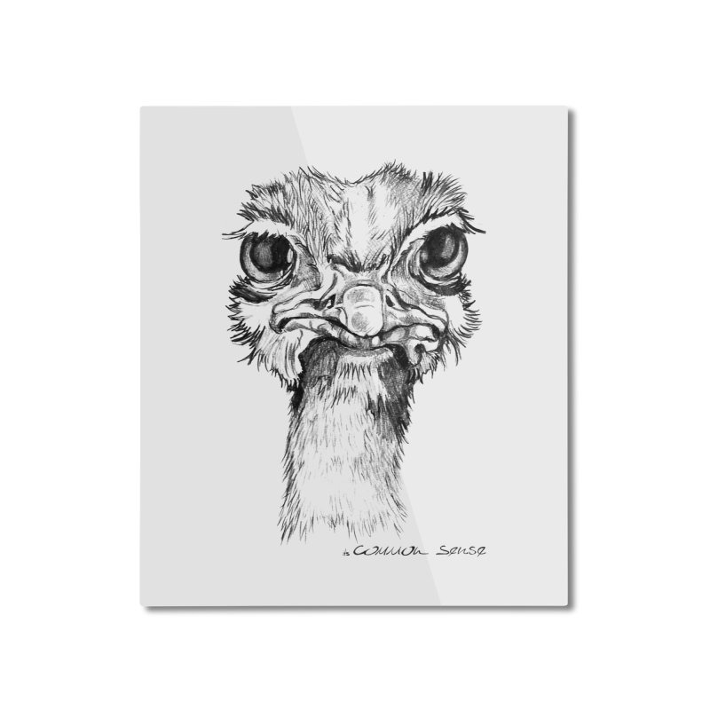 The Common Ostrich Home Mounted Aluminum Print by it's Common Sense