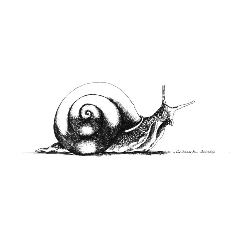 the Snail Home Fine Art Print by it's Common Sense