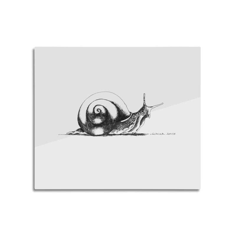 the Snail Home Mounted Aluminum Print by it's Common Sense